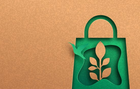 Ответственное потребление и борьба с органическими отходами