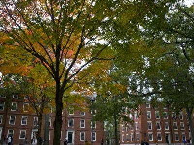 Дома Гарварда